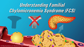 Animation - Understanding Familial Chylomicronemia Syndrome (FCS)