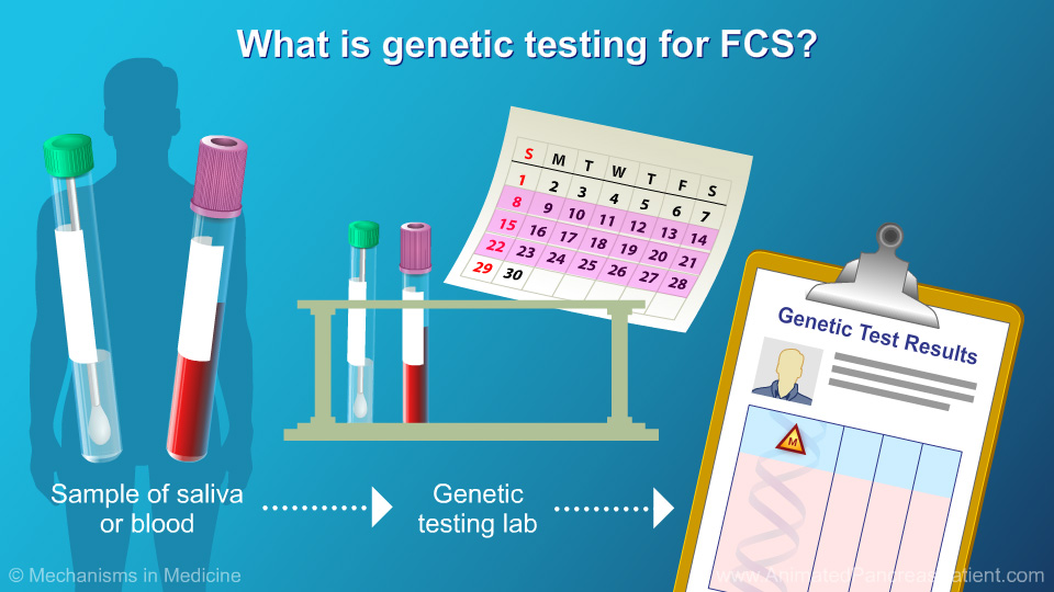 What is genetic testing for FCS? - 1